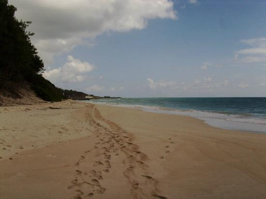 Silver Point Hotel: tracks along local strecth of beach