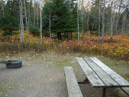 Temperance River State Park: camp site 36?