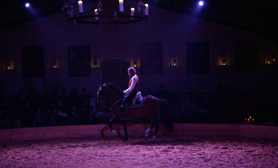 Theatre Equestre Camarkas : Thierry Pellegrin haute école