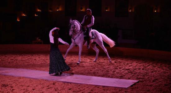 Theatre Equestre Camarkas : Pas de deux cheval danseuse