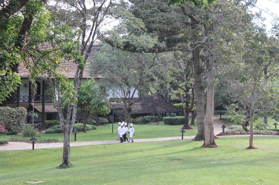 Safari Park Hotel: Extensive & beautiful hotel grounds