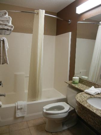 Microtel Inn & Suites by Wyndham Mansfield: Bathroom