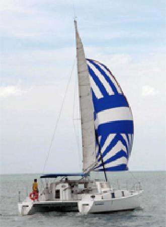 Langkawi Dolphin Cruise : getlstd_property_photo