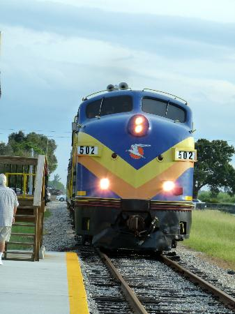 Seminole Gulf Railway Murder Mystery Dinner Train: train