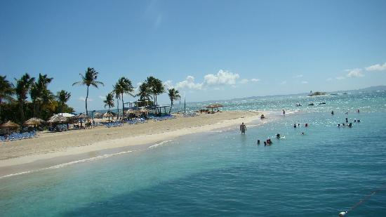 Palomino Island