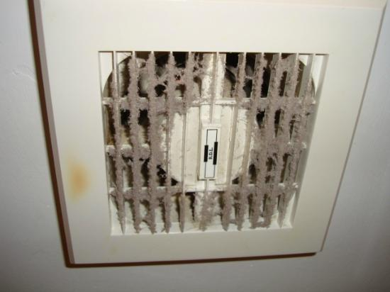 Park House Guest House: Bathroom vent, disgusting (Room 10)