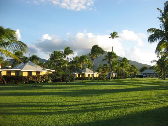 Nisbet Plantation Beach Club: Some of the property