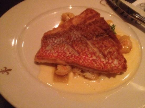 GW Fins: Sauteed American Red Snapper