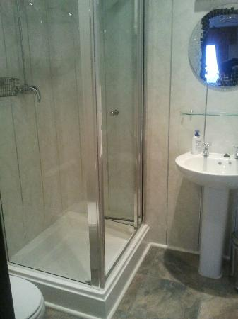 The Baron: lovely clean shower room