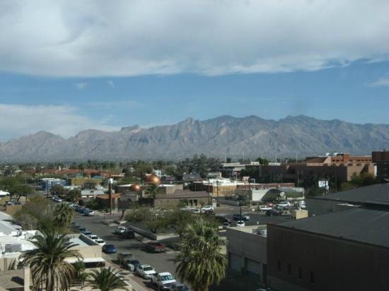 Tucson Marriott University Park: The view from my room