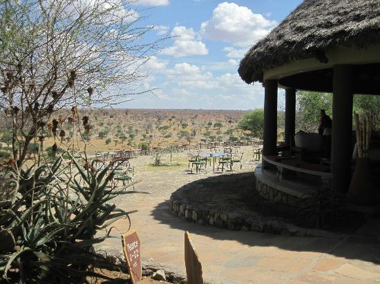 Tarangire Safari Lodge: Veranda, dining area, and the savanna