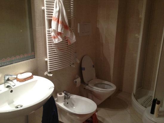 Green House Sorrento: il bagno