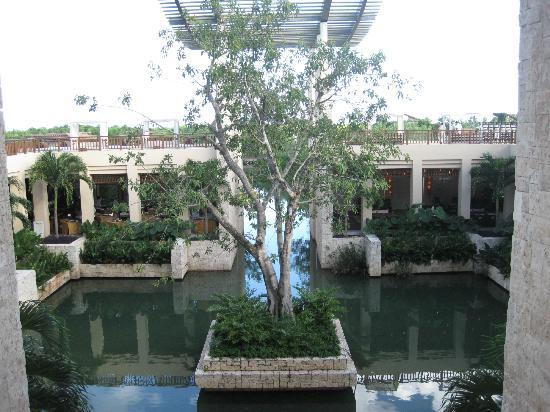 Banyan Tree Mayakoba: viewing the banyan tree from the main entrance