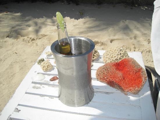 Banyan Tree Mayakoba: cold coronas, shells & coral