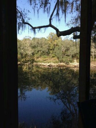 Suwannee River Rendezvous Resort & Campground: from the patio at the A Frame