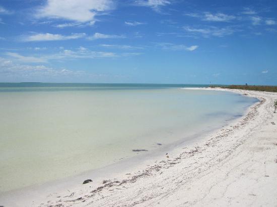 Holbox Hotel Casa las Tortugas - Petit Beach Hotel & Spa: playas de holbox