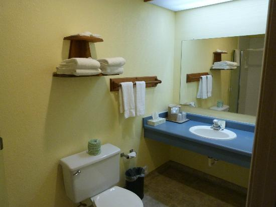 INNS of California-Sonora: Bathroom