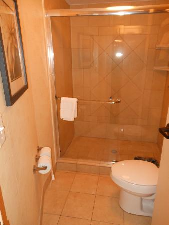 SpringHill Suites Orlando Airport: room 616 bathroom