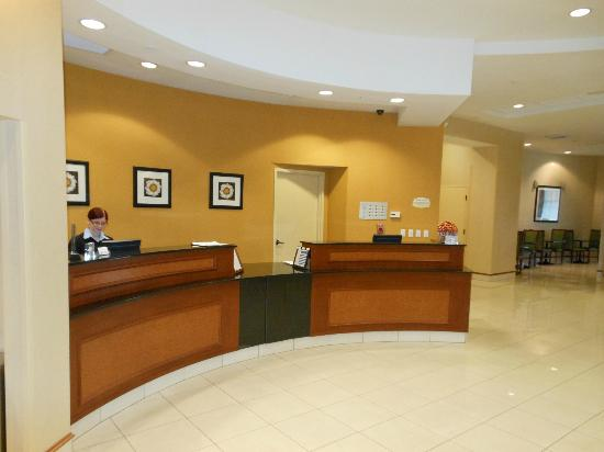 SpringHill Suites Orlando Airport: front desk
