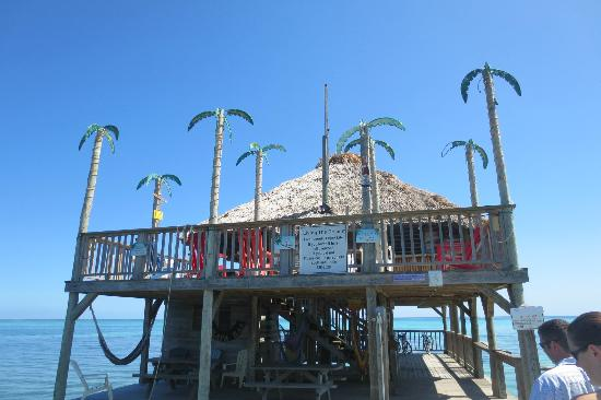 Pelican Reef Villas Resort: Palapa Bar!!