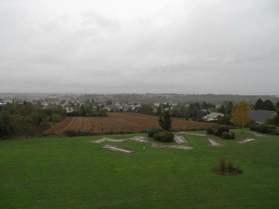 Novotel Amboise: Vue sur Amboise