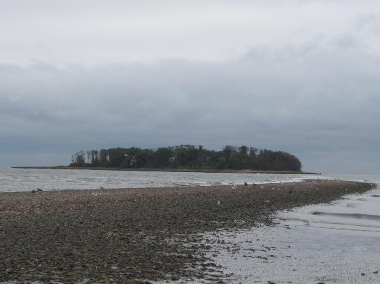 Charles Island-Silver Sands State Park