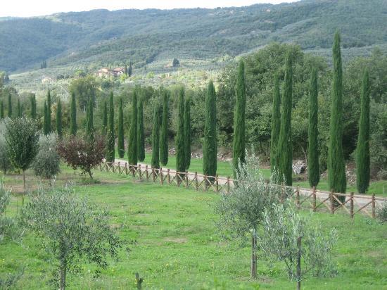 Castiglion Fiorentino, İtalya: Entry way