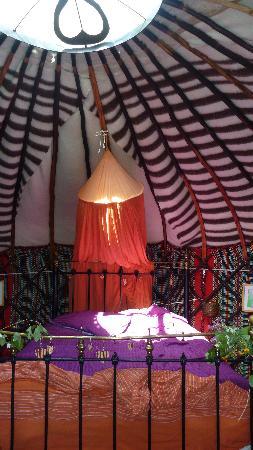Yurt Holiday Portugal: Chestnut tree yurt