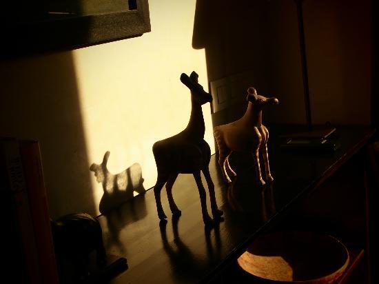 Riad Idra: amazing