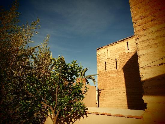 Riad Idra: unforgettable experience
