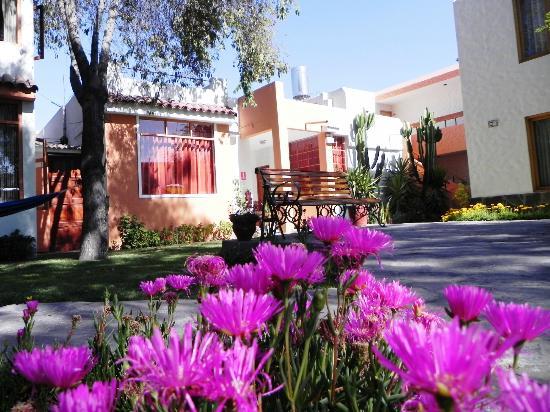 Hotel La Casa de mi Abuela: Jardim muito cuidado