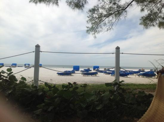 Guy Harvey Outpost, a TradeWinds Beach Resort: looking at ocean from pool