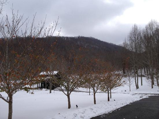 The Buck House Inn on Bald Mountain Creek: View off the porch
