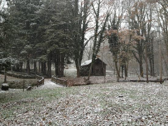 The Buck House Inn on Bald Mountain Creek: House
