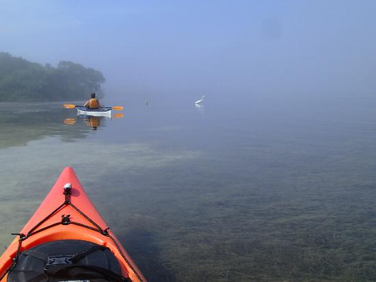 Osprey Bay Outdoors: A beautiful foggy morning at Ft Desoto