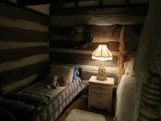 Country Road Bed and Breakfast: Twin bed in Log House