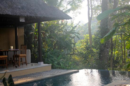 Komaneka at Monkey Forest: View from the private terrace overlooking the jungle