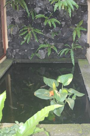 Komaneka at Monkey Forest: Private Koi Pond