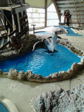 Old Pro Golf: The indoor dolphin fountain