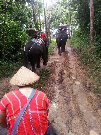 Siam Safari: the view of Chalong bay