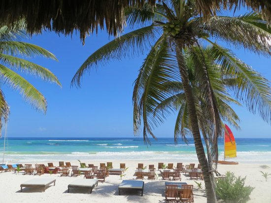 Akiin Beach Club Tulum Restaurant Reviews Amp Photos