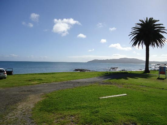 Driftwood Lodge: View of Doubtless bay from motel