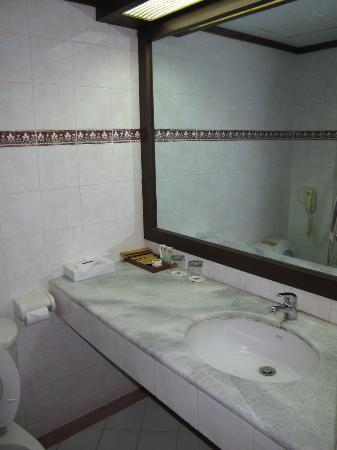 Hotel Pangeran : bathroom