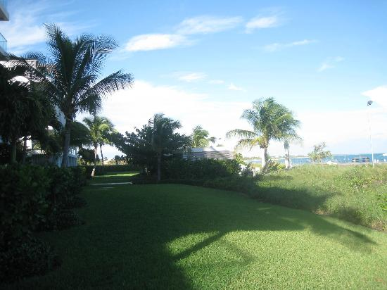 Gansevoort Turks + Caicos: Lush greenery buffering our deck from the beach affords privacy