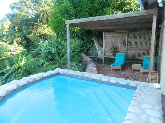 Stonefield Estate Resort: Jacaranda pool
