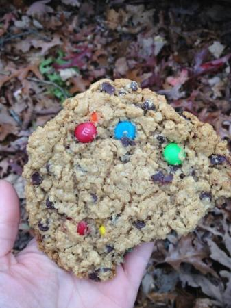 Len Foote Hike Inn: Amicoicious cookie from $6 bagged lunch.