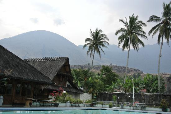 Kampung Sumber Alam: pool