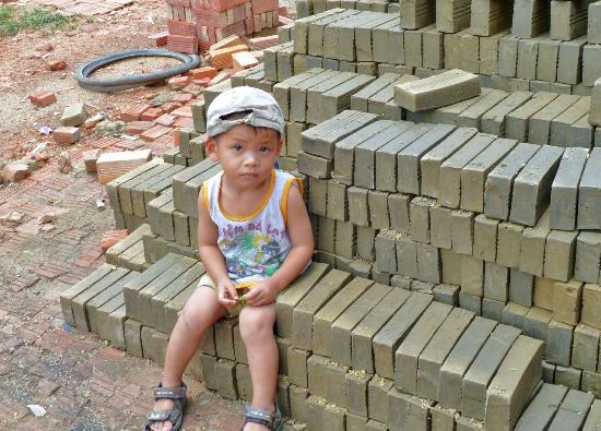 Mango Cruises - Private Day Tours: the brick factory - this guy was a cutie that followed us around