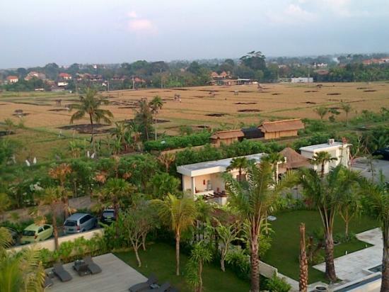 favehotel Umalas: paddy field