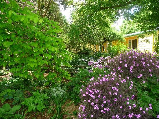 Dalblair Bed and Breakfast: Our stunning garden is ready for you to explore
